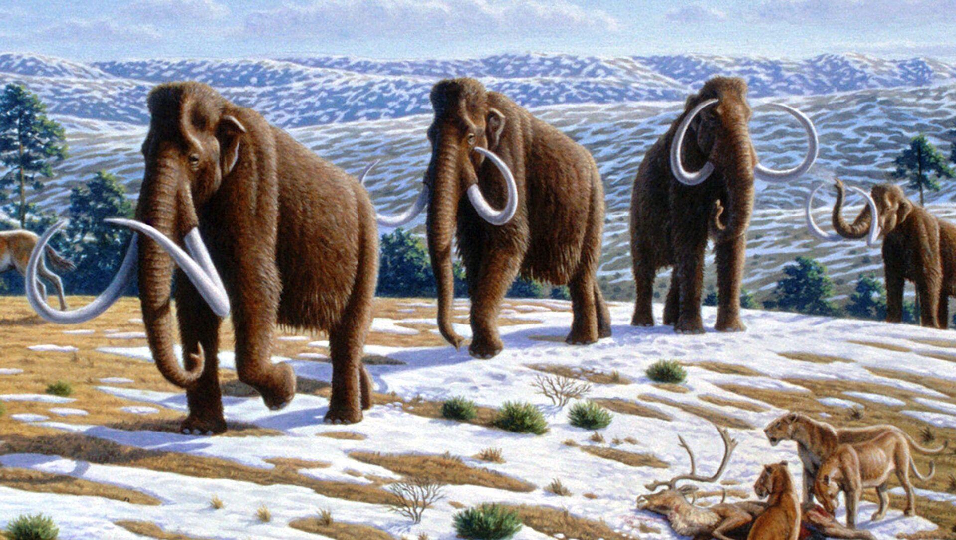 Mammut - rappresentazione artistica - Sputnik Italia, 1920, 04.05.2021