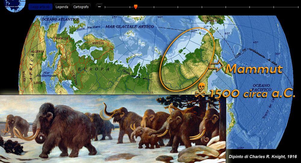 Mammut lanoso - Siberia Nord-orientale (RUS), circa 3.500 anni fa