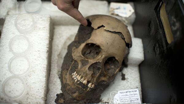 Череп, обнаруженный археологами в ацтекском храме Темпло Майор, Мехико - Sputnik Italia