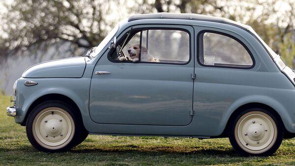 Una Fiat spinta dall'autista - Sputnik Italia