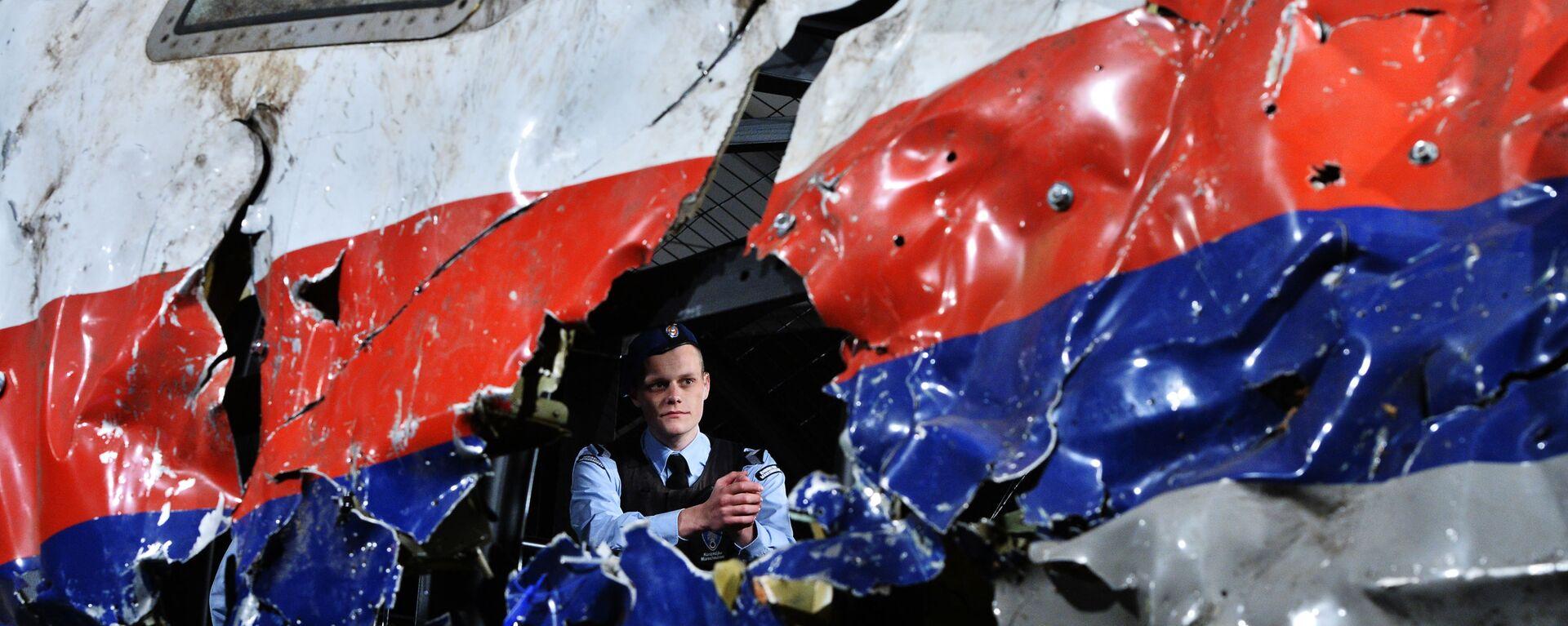 Ricostruzione del disastro del Boeing 777 Malaysia Airlines (volo MH17) nel Donbass il 17 luglio 2014 - Sputnik Italia, 1920, 12.11.2020