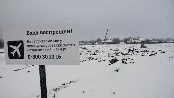 Luogo del disastro del volo Malaisia Airlines MH17 nel Donbass - Sputnik Italia