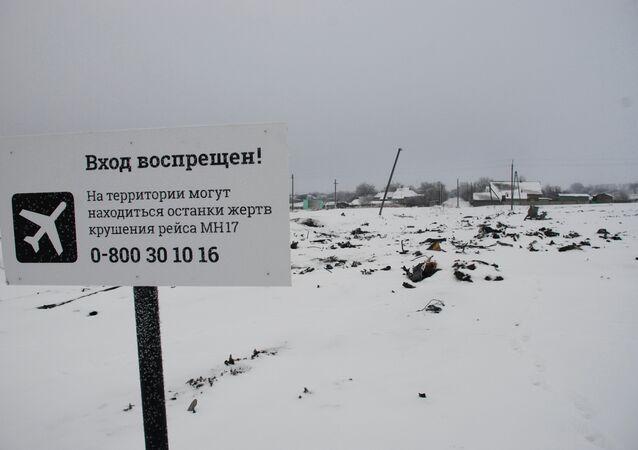 Luogo dello schianto del boeing malese nel Donbass