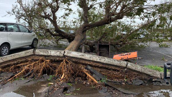 Последствия прохождения циклона Идаи в Мозамбике - Sputnik Italia