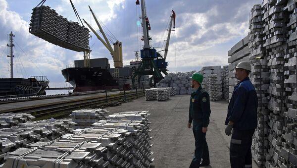 Controlli doganali nel porto di Zarubino in Russia - Sputnik Italia