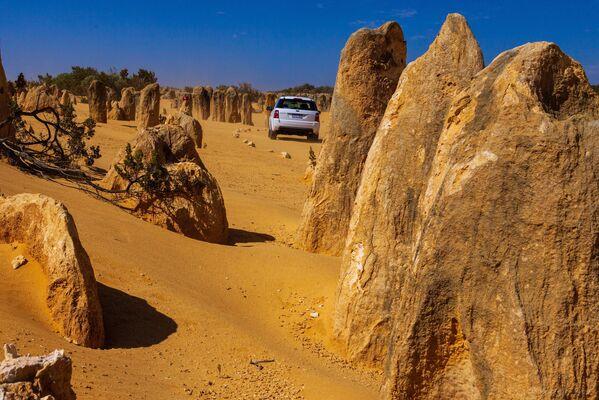 Il deserto dei Pinnacoli in Australia. - Sputnik Italia