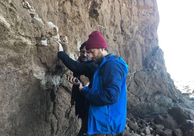 Paleontologi del Museo Scaglia lavorano nella zona Mar del Plata