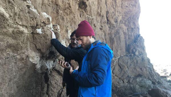 Paleontologi del Museo Scaglia lavorano nella zona Mar del Plata - Sputnik Italia