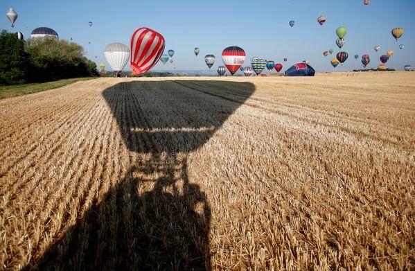 Le mongolfiere in volo sui campi di grano. - Sputnik Italia