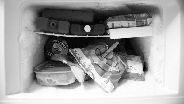 Congelatore di frigorifero - Sputnik Italia