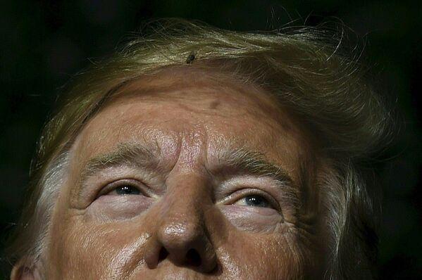 Una mosca nei capelli di Donald Trump durante il suo intervento a Jamestown, nello stato della Virginia - Sputnik Italia