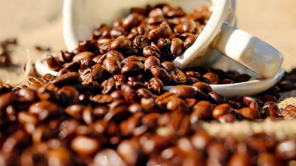 I chicchi di caffè - Sputnik Italia