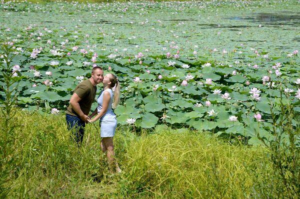 Due innamorati si scambiano tenerezze in un campo di fiori di loto - Sputnik Italia