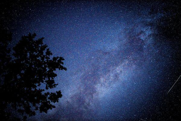 Per osservare la pioggia di meteore non sono necessari telescopi e altri strumenti astronomici, basta la notte per godersi il cielo stellato, lo spettacolo dell'estate può essere visto da chiunque. - Sputnik Italia