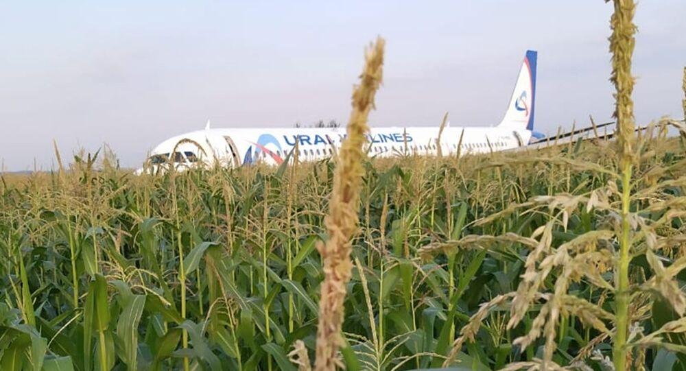 L'atterraggio d'emergenza di un aereo passeggeri A321 vicino a Mosca