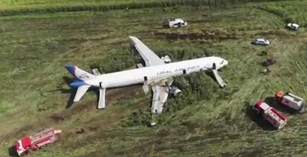 Dopo il decollo nei motori dell'aereo è finito uno stormo di gabbiani. - Sputnik Italia