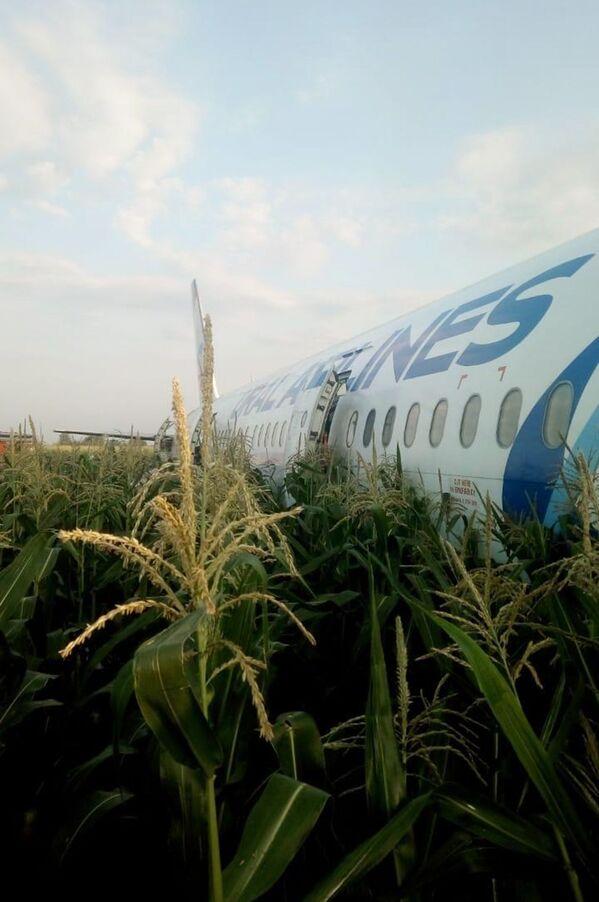 Yusupov ha rilevato che inizialmente voleva fare ritorno all'aeroporto, in quanto la potenza di uno dei motori non era sufficiente per proseguire il volo. - Sputnik Italia