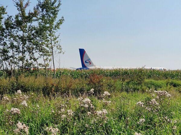 Quando il pilota si è reso conto che l'impatto col suolo era ormai inevitabile, ha cercato di far atterrare l'aereo il più delicatamente possibile. - Sputnik Italia