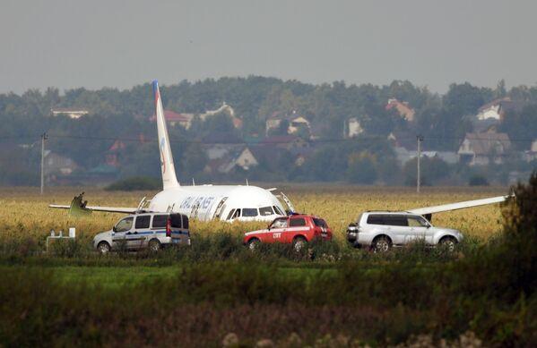 L'atterraggio d'emergenza dell'Airbus A-321 in un campo vicino all'aeroporto moscovita di Zhukovskiy a causa di un avaria dei motori causata da un evento di bird strike dopo il decollo: grazie alla maestria del pilota tutti i 200 passeggeri a bordo sono rimasti incolumi - Sputnik Italia