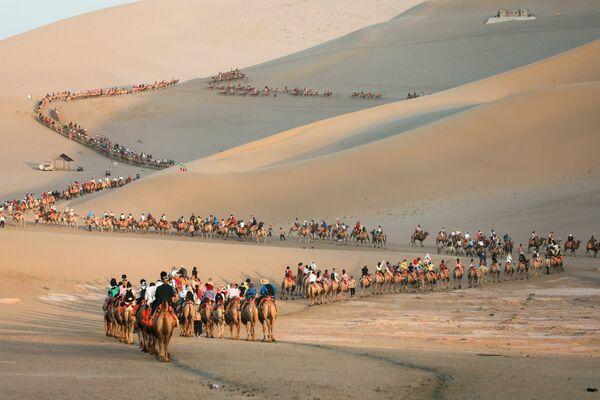 Una carovana di turisti sui cammelli nel deserto del Dunhuang in Cina - Sputnik Italia