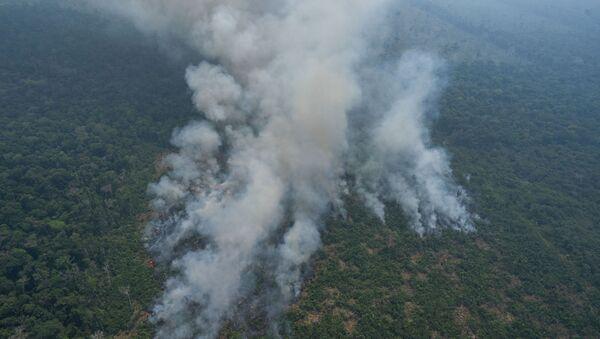 Incendi boschivi in Amazzonia - Sputnik Italia