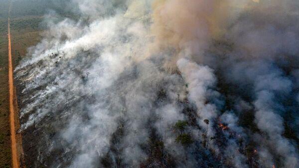 Alcuni stati in Brasile hanno dichiarato lo stato di emergenza.  - Sputnik Italia