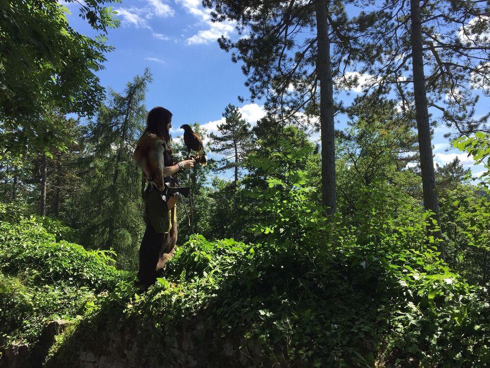 La foresta bavarese, la Foresta Nera, lo Harz... sono famosi boschi tedeschi.