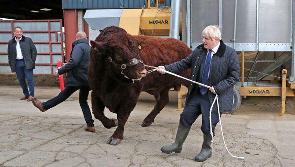 Il premier britannico Boris Johnson - Sputnik Italia