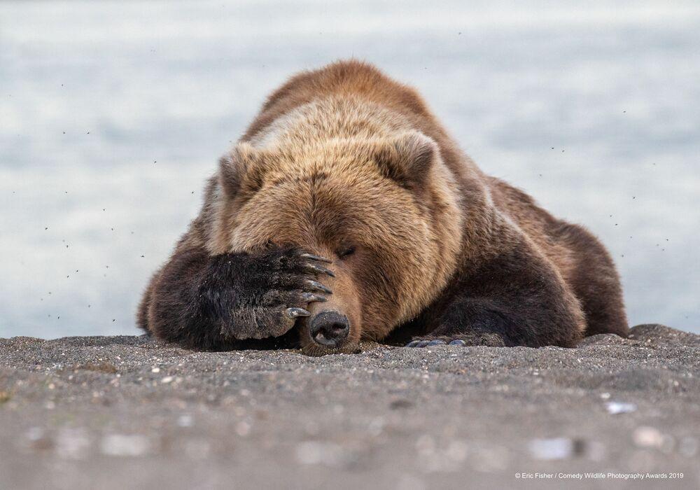 Per il fotografo Eric Fisher questo è il ritratto di come ci si sente il lunedì mattina.