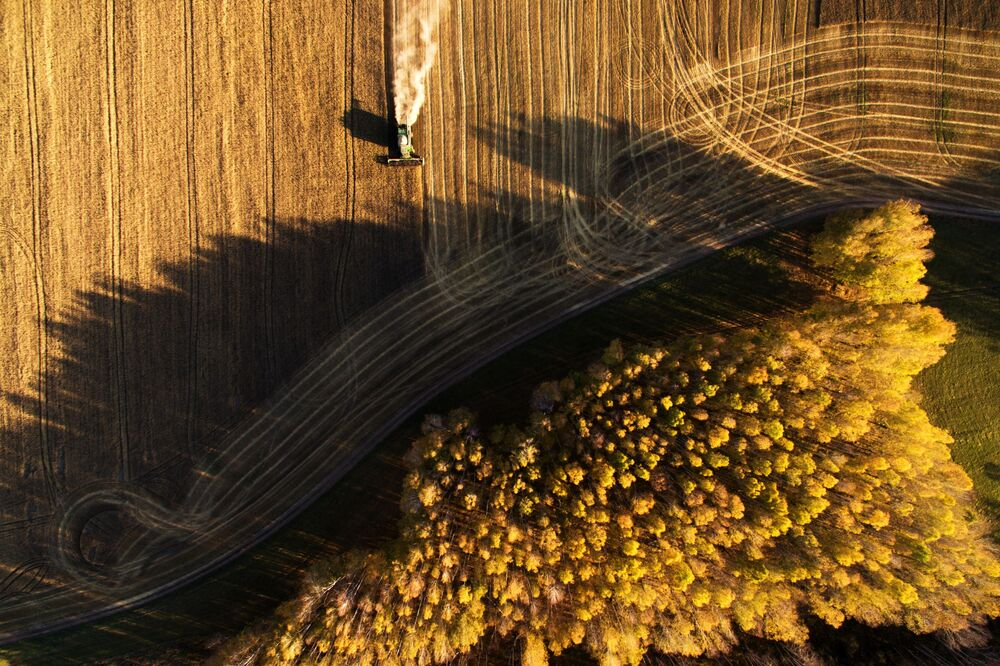 Raccolta del grano nell'Oblast di Novosibirsk, in Russia.