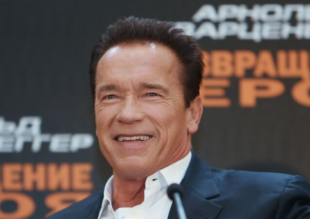 Actor Arnold Schwarzenegger. (File)