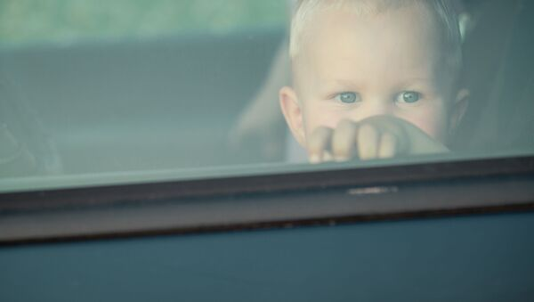 Un bambino nell'auto - Sputnik Italia