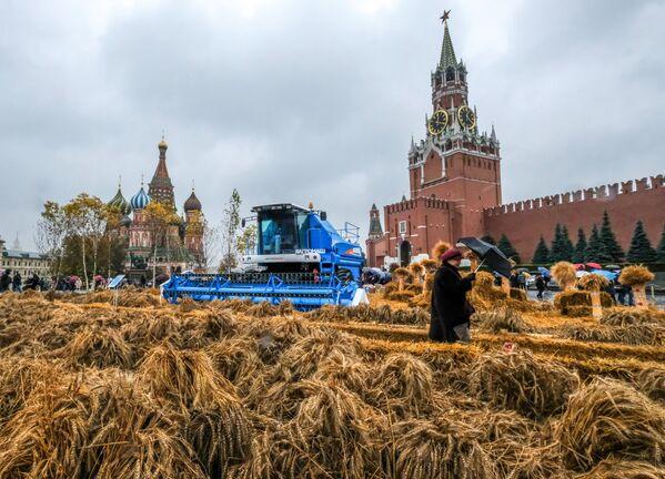 Il Festival dell'autunno nella Piazza Rossa a Mosca. - Sputnik Italia