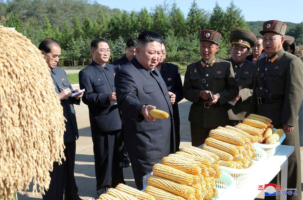 Il leader nordcoreano Kim Jong-un in visita in una fattoria.