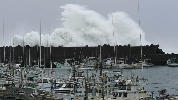 Il tifone Hagibis in Giappone - Sputnik Italia