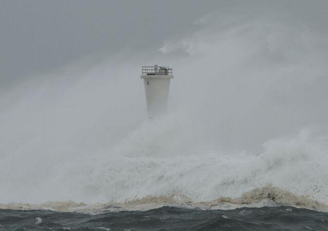 Il tifone Hagibis