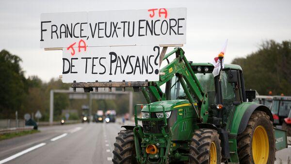 Gli agricoltori protestano in Francia - Sputnik Italia