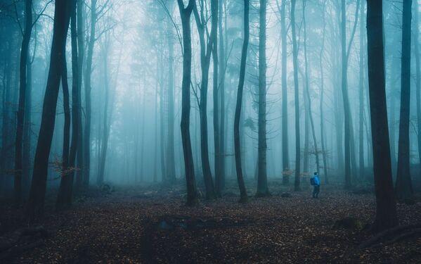 La foto 'L'escursionista' presentata dal fotografo tedesco Alexander Schitschka al concorso delle migliori foto del mondo #Blue2019  - Sputnik Italia