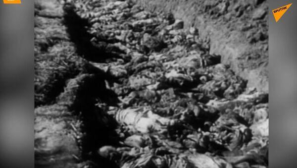 La liberazione dell'Ucraina dagli occupanti tedeschi - Sputnik Italia