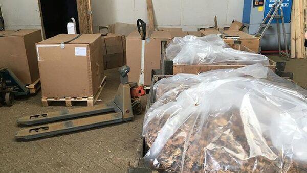 Produzione di tabacco illecita - Sputnik Italia