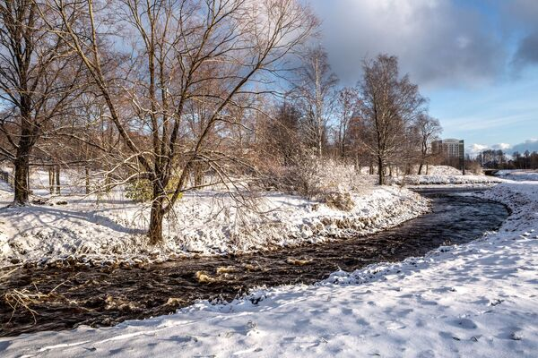 Il Parco di Zaretsky dopo le nevicate notturne a Petrozavodsk, Russia - Sputnik Italia