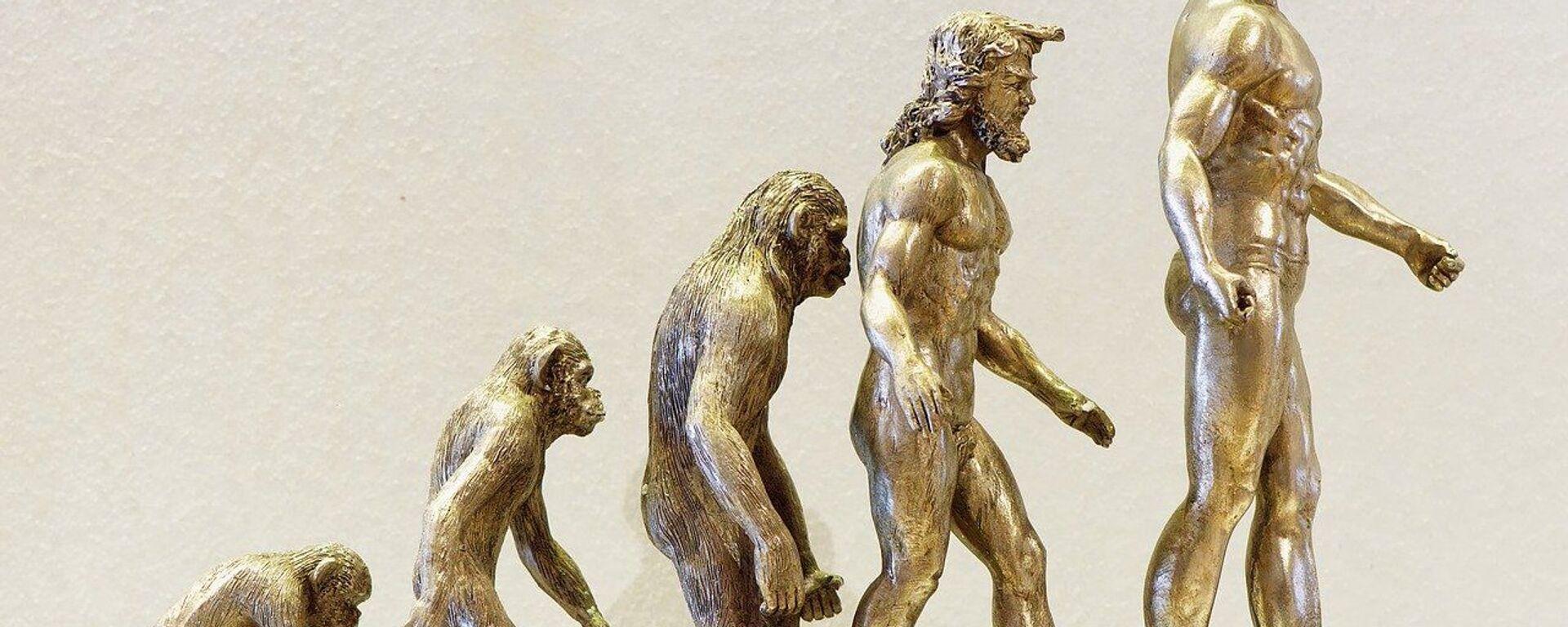 Evoluzione umana - Sputnik Italia, 1920, 23.08.2020