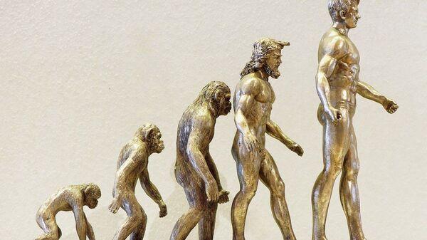 Evoluzione umana - Sputnik Italia