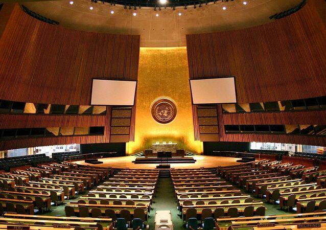 Assamblea generale dell'Onu