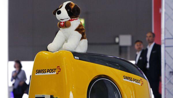 cane in macchina - Sputnik Italia