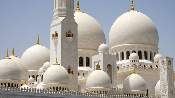La moschea dello sceicco Zayed Bin Sultan Al Nahyan ad Abu Dhabi - Sputnik Italia