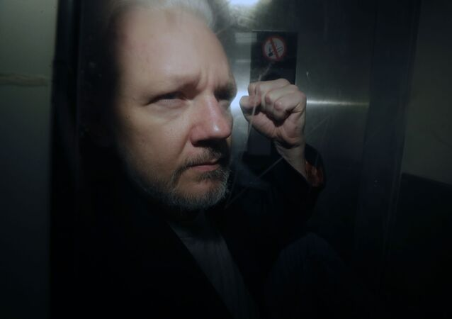 WikiLeaks founder Julian Assange being taken from court, where he appeared on charges of jumping British bail seven years ago