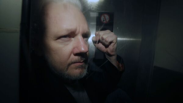 WikiLeaks founder Julian Assange being taken from court, where he appeared on charges of jumping British bail seven years ago - Sputnik Italia
