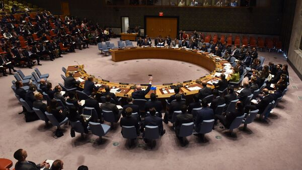 Assemblea generale dell'ONU  - Sputnik Italia