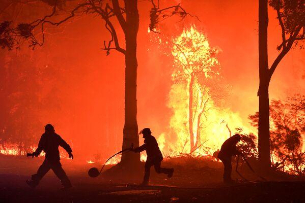 Volontari, vigili del fuoco e protezione civile contro il vasto incendio boschivo nel Nuovo Galles del Sud, in Australia. - Sputnik Italia